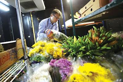 Bloomex distribution centre, Dimitri