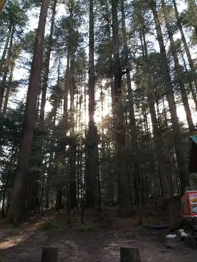 Manali - a Magical Hillstation