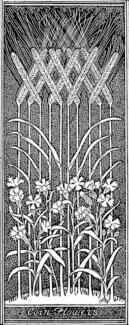 1892 corn flowers graphic large