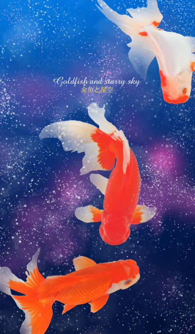 goldfish and starry sky