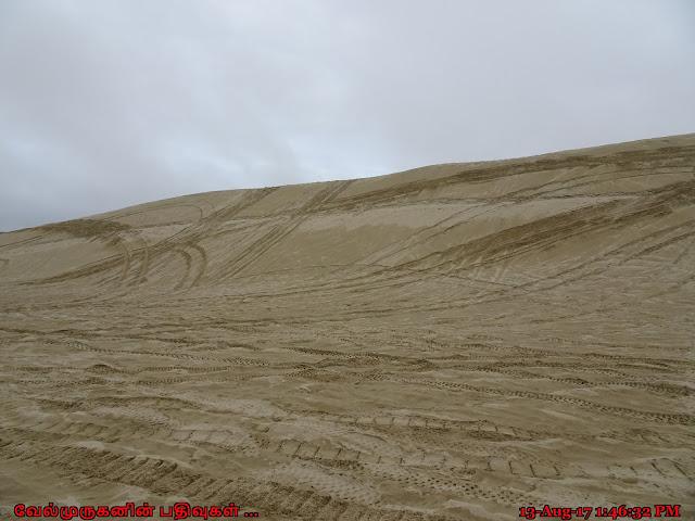 Oregon Dunes 101 Highway