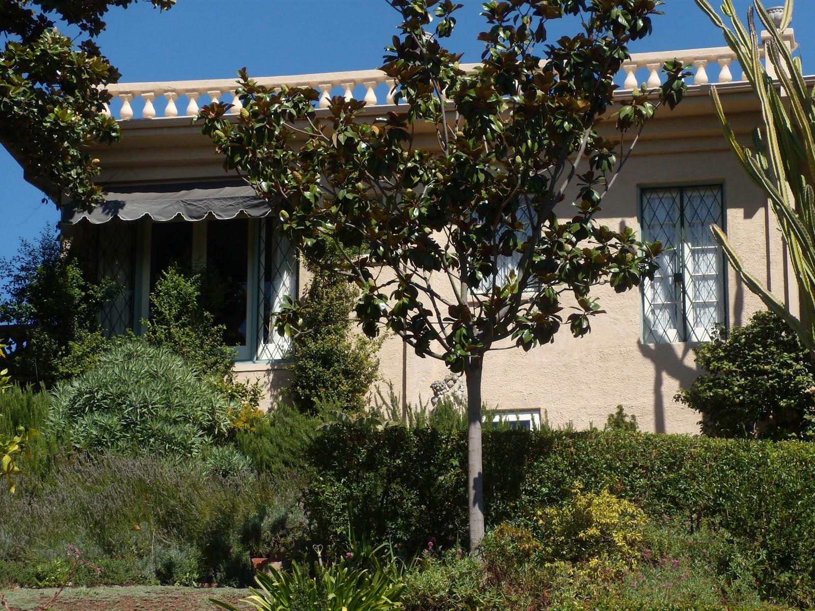 """visit to a public garden Of course, the best way to celebrate public gardens is to visit one the morton  arboretum is a special kind of public garden """"arboretum"""" means."""