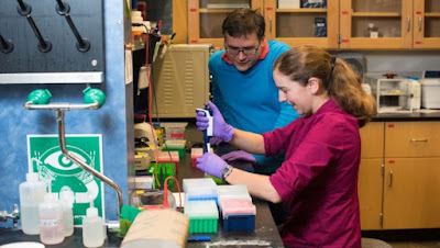 Researchers at Microsoft and the University of Washington have stored a record 200 megabytes of data on strands of DNA.