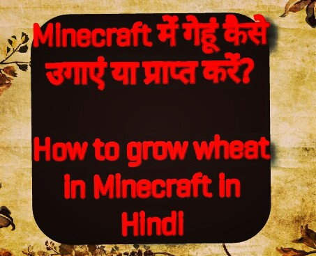 Minecraft में गेहूं कैसे उगाएं या प्राप्त करें / How to grow wheat in Minecraft in Hindi