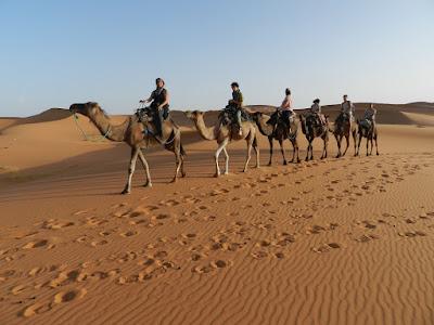 escursione nel deserto dromedari marocco