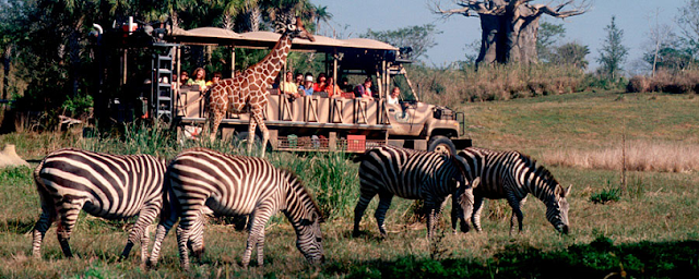 Parque Disney Animal Kingdom