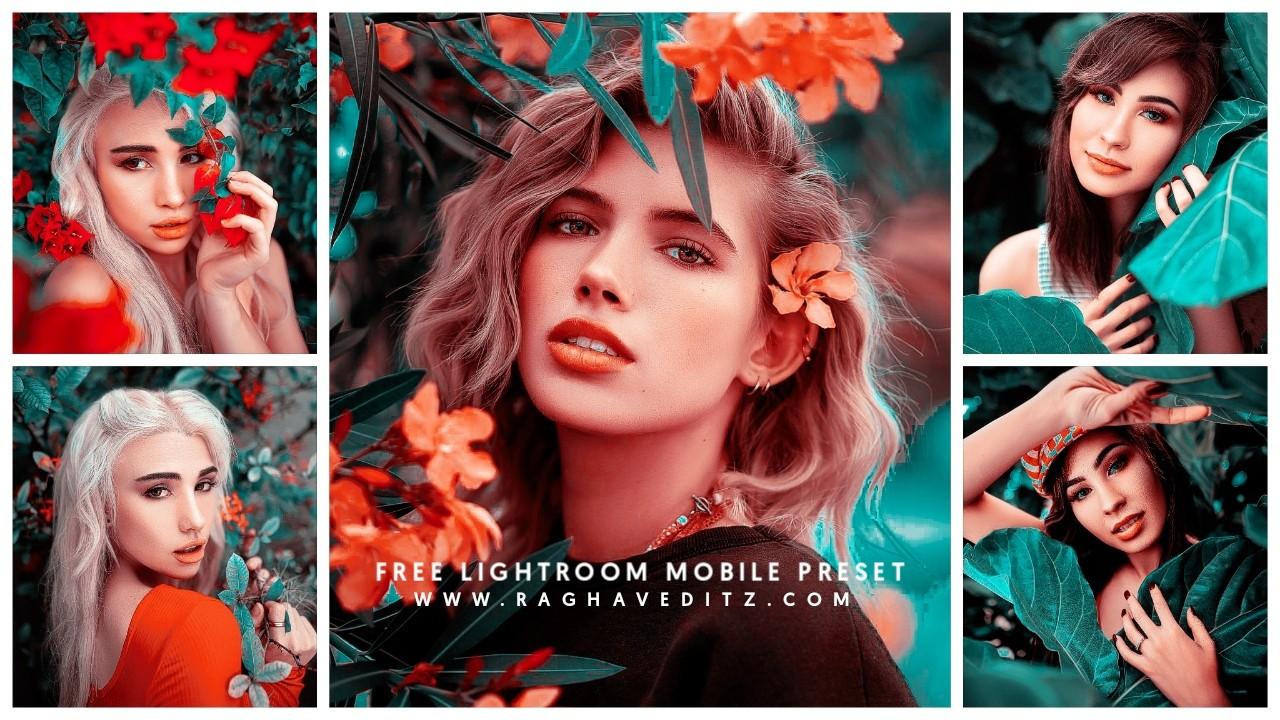 lightroom preset