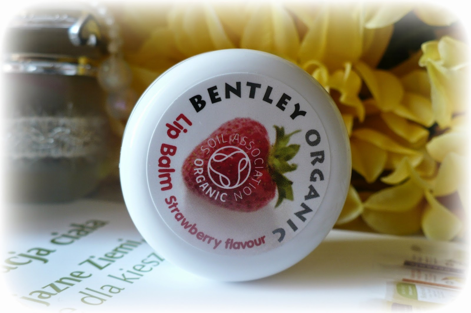 Lip Balm Strawberry Bentley Organic :)NaturePolis.