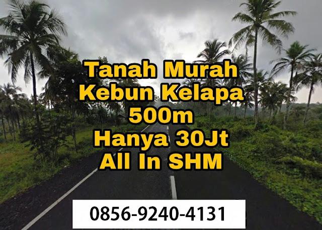 Tanah-Kavling-Kebun-Kelapa-Indopro-Syariah-Cianjur-Agrabinta-Green-coco-Land