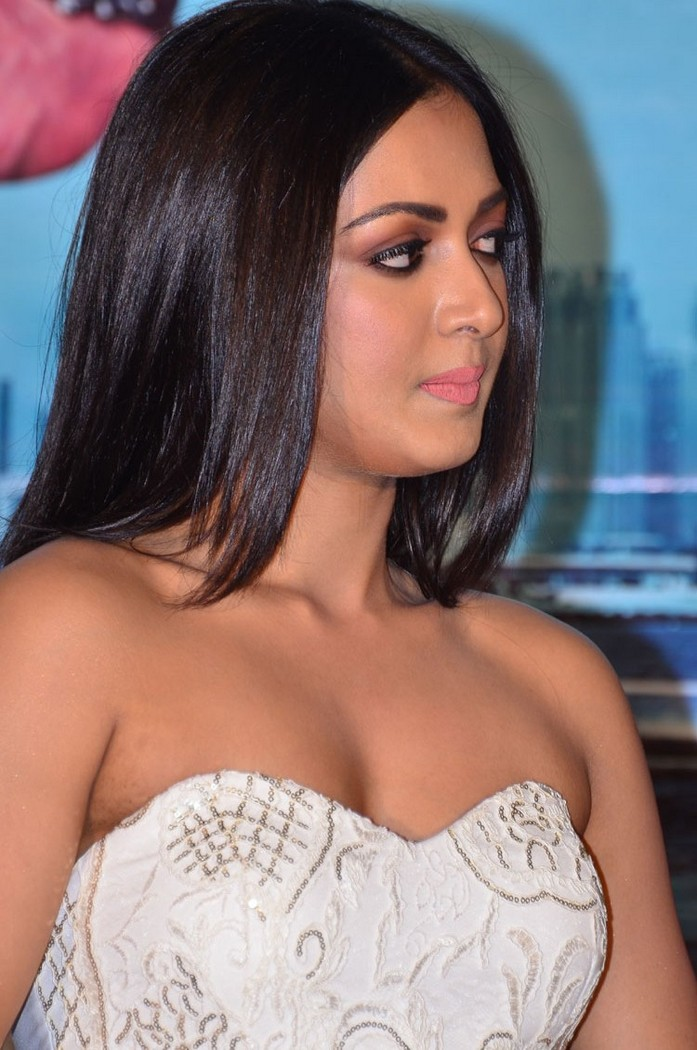 Catherine Tresa At Gautamnanda Teaser Launch Gallery