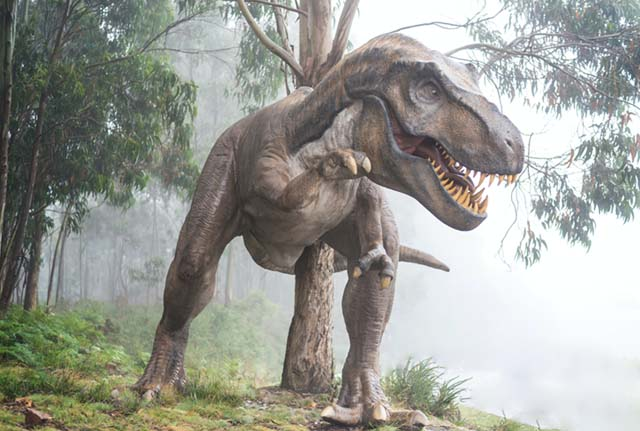 how-dinosaurs-died-in-assamese
