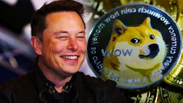 Elon Musk's Dogecoin