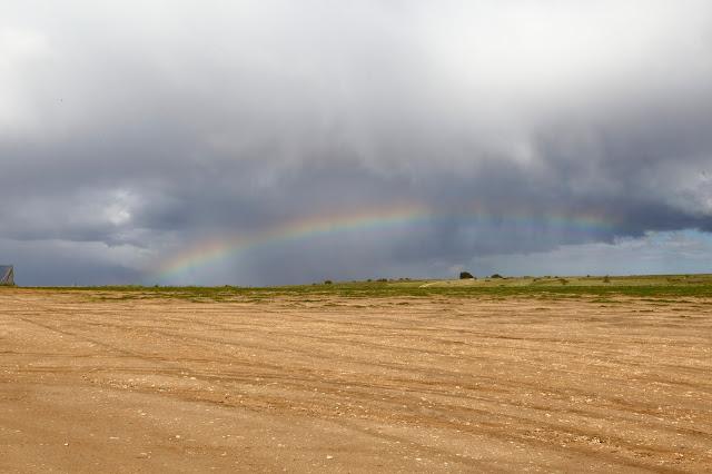 Tablas de Daimiel - arco iris