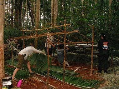 penelitian di hutan lindung lambusango