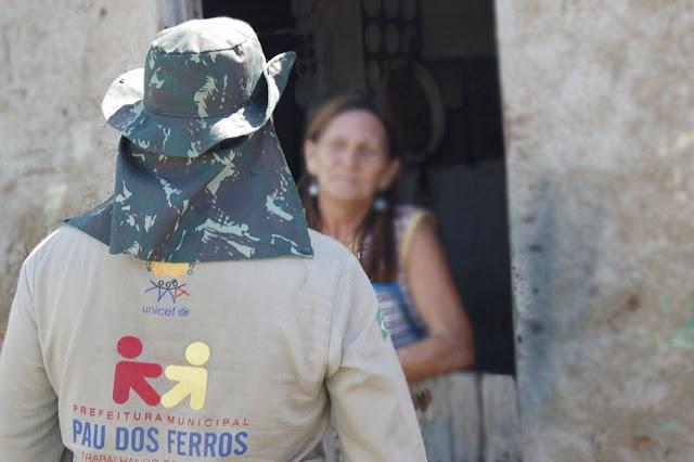 Mosquito Aedes Aegypti preocupa a cidade de Pau dos Ferros - RN e regiões circunvizinhas