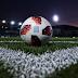 Επιτροπή από Αυγενάκη, FIFA, UEFA για βία και στημένα