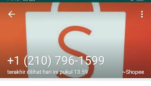 Waspada!! Nomor Peribadi Dibajak Untuk Belanja Online Jangan Kasih OTPnya, Ini Nomor Kode +1(210) Penipu yang Digunakan
