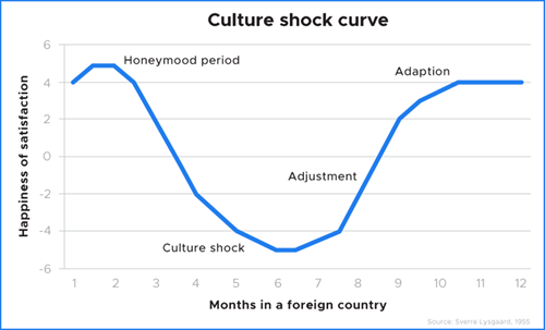 Culture shock stages curve