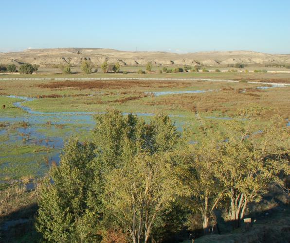 Estado actual de la vega del valle del Manzanares. Foto: Joaquín Panera
