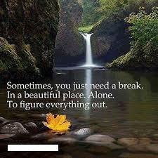 Nature Mind Quotes About Life