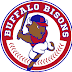 Buffalo's offense silenced, losing 4-0 to Indians