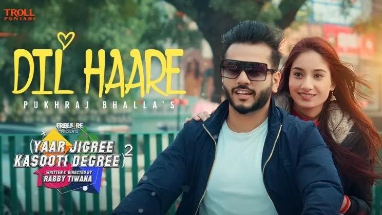 Dil Haare Lyrics in Hindi