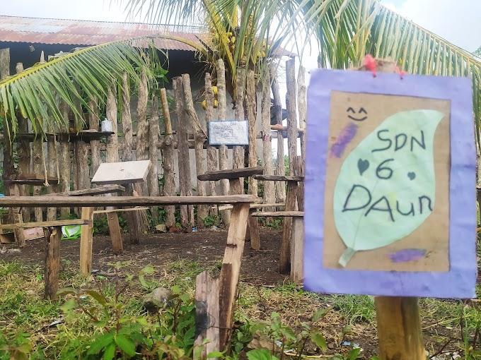 SDN 6 Daun Manggelewa Milik Siswa SD, Di Kelilingi Persawahan Hingga Tak Ada Hari Libur