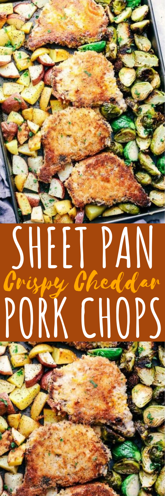 Sheet Pan Crispy Cheddar Pork Chops #dinner #pork
