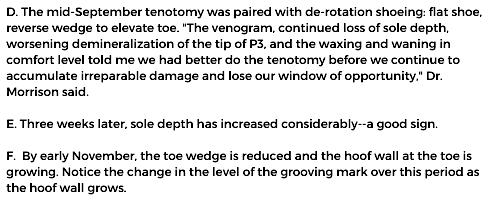 post-tenotomy radiograph captions