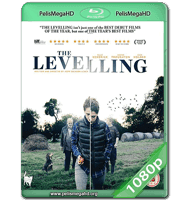 THE LEVELLING (2016) WEB-DL 1080P HD MKV INGLÉS SUBTITULADO