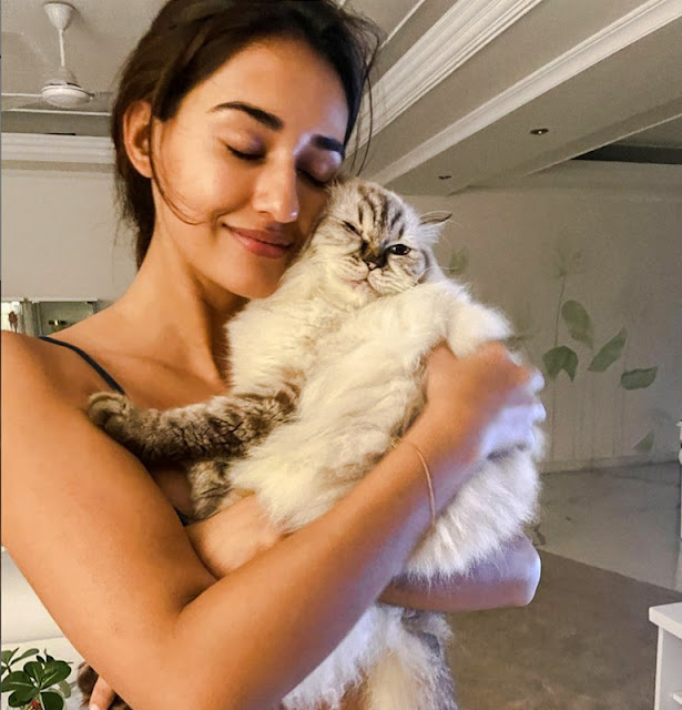 Disha Patani with her purebred cat