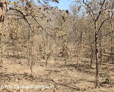 अजयगढ़ पन्ना  - Ajaygarh Panna