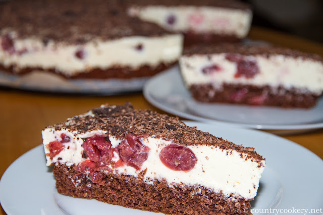 Chocolate Yogurt Cheesecake