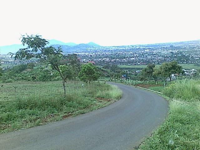 Foto%25285325%2529 Jual Tanah Di Puncak 2, Murah Jual tanah di cipanas jual tanah di puncak jual tanah di puncak2