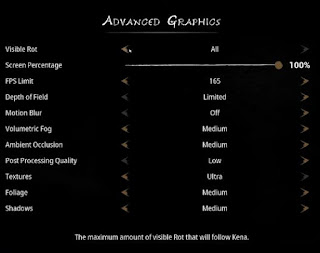 Best Settings, Run Smoothly, Kena, Bridge of Spirits, KBoS, Old PC, New PC, High-End, Low-End