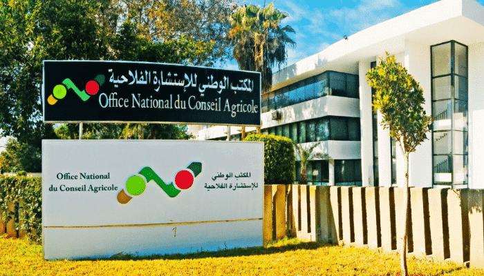 المكتب الوطني للاستشارة الفلاحية