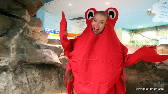 dressing as a lobster