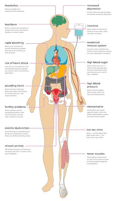Efek Stres Pada Tubuh Anda