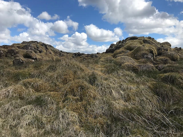 Gawin Moor Cairn 3