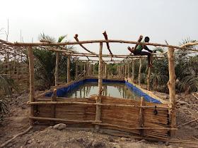 lelaurier la pisciculture en hors sols