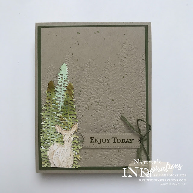 By Angie McKenzie for As You See It #245 Challenge entry; Click READ or VISIT to go to my blog for details! Featuring the Nature's Beauty Stamp Set, the Majestic Mountain Dies and the Evergreen Forest 3D Embossing Folder; #AYSI245 #stampinup #handmadecards #naturesinkspirations #masculinecards #cardchallenges #goodmorningmagnoliastampset  #makingotherssmileonecreationatatime #naturesbeautystampset #evergreenforest3dembossingfolder #tastefullabelsdies #coloringwithwaterpainters #cardtechniques #fussycutting