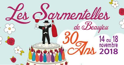 blog vin Beaux-Vins événement sortie salon œnologie dégustation Novembre Sarmentelles Beaujeu