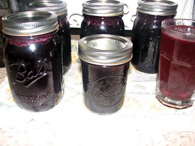 Method of Preserving Fresh Cherries