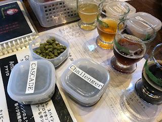 ホップ決め (常陸野ネストビール作り体験)