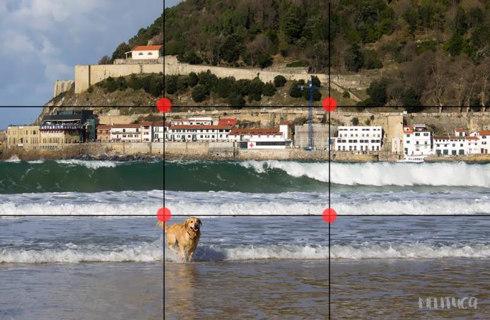 mejora tus fotografías consejos I cuadricula