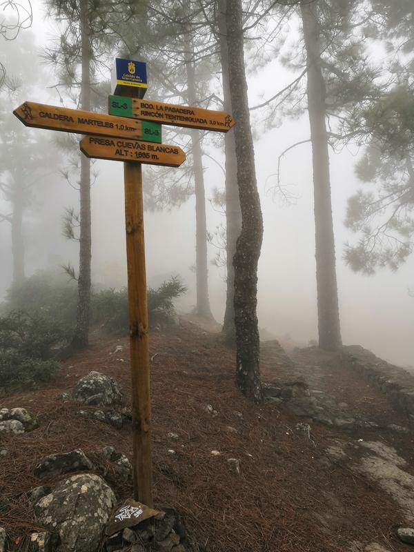 Туман на Гран-Канарии