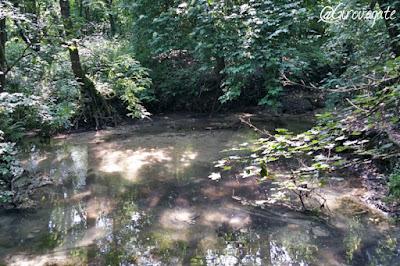 parco naturale sile marca trevigiana
