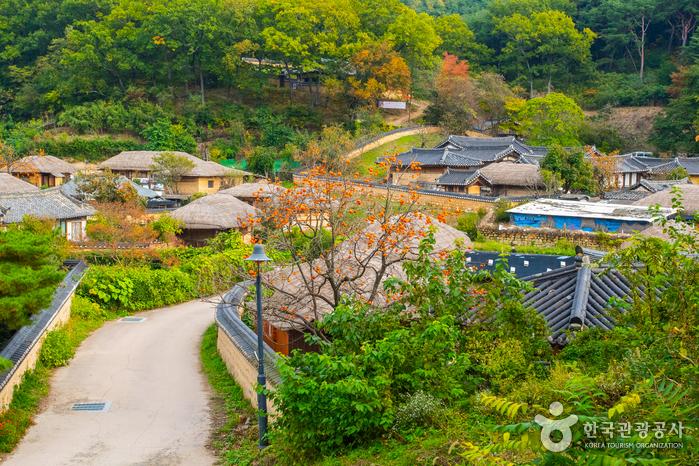 หมู่บ้านวัฒนธรรมยางดง (Yangdong Folk Village)