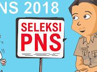 Prosedur Pendaftaran dan Materi Seleksi CPNS 2018