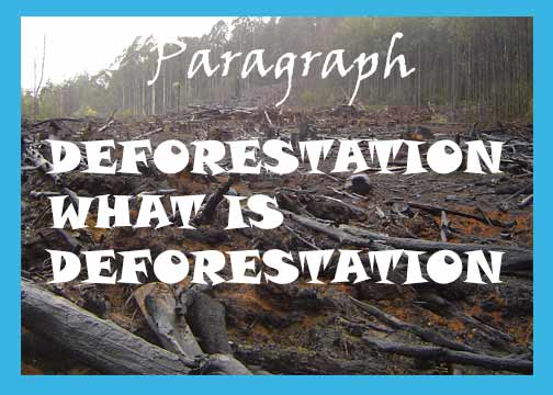 Deforestation paragraph for all. What is deforestation. What are the cause of deforestation